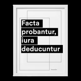 """Quadro """"Facta probantur"""""""